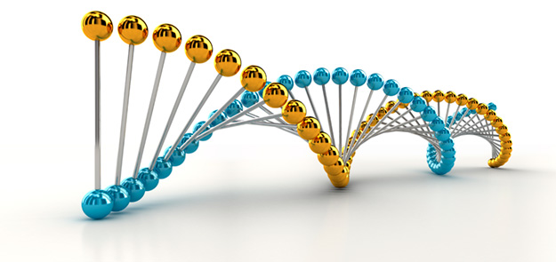 Image of a double helix